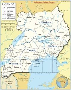 Pinch Valve in Uganda