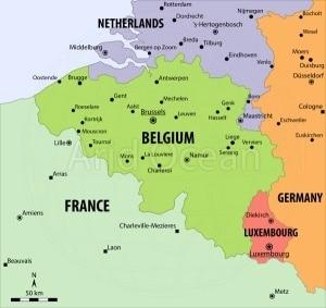 pulp stock Exporter in Belgium